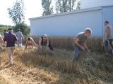 Fête des récoltes